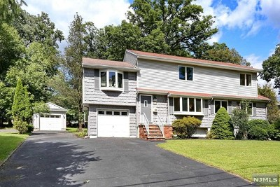 Park Ridge Single Family Home For Sale: 167 Mansfield Road