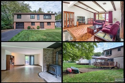 Morris County Single Family Home For Sale: 6 Algonquin Avenue