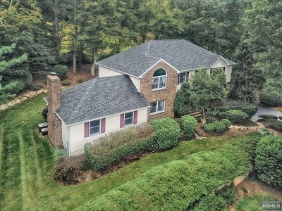 Morris County Single Family Home For Sale: 10 James Road