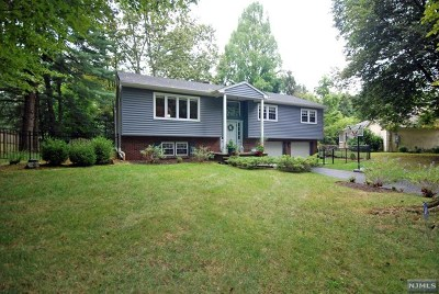 Closter Single Family Home For Sale: 222 Irving Avenue