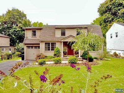 Park Ridge Single Family Home For Sale: 15 Park View Drive
