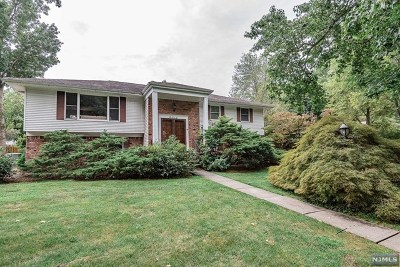 Paramus Single Family Home For Sale: 266 Springfield Avenue