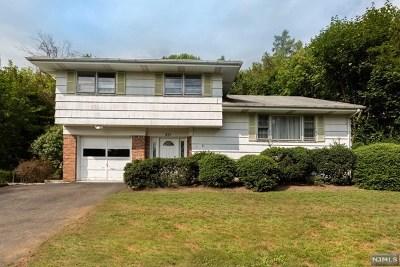 Park Ridge Single Family Home For Sale: 233 Ellin Drive