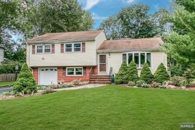 Hillsdale Single Family Home For Sale: 289 Ell Road