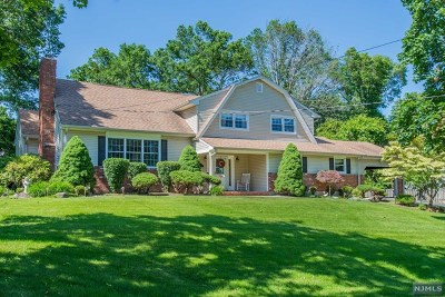 Morris County Single Family Home For Sale: 15 Munson Drive