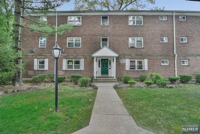 Bergen County Condo/Townhouse For Sale: 7 Romaine Court #A1