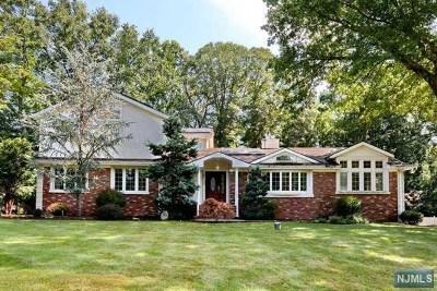 Upper Saddle River Single Family Home For Sale: 11 Echo Ridge Road