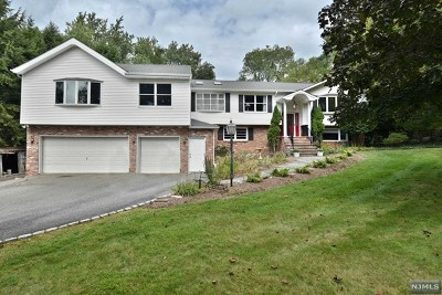 Bergen County Single Family Home For Sale: 15 Masonicus Road