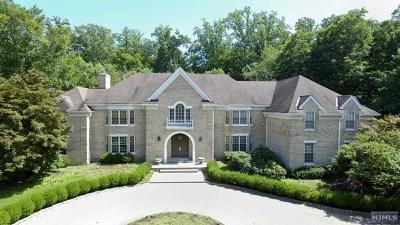 Saddle River NJ Single Family Home For Sale: $3,199,500