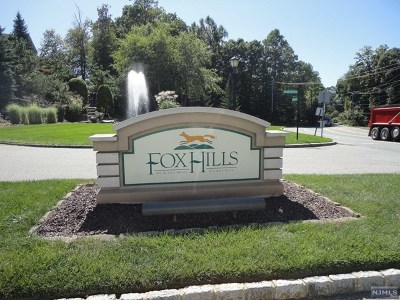 Morris County Condo/Townhouse For Sale: 2305 Franklin Lane #2305