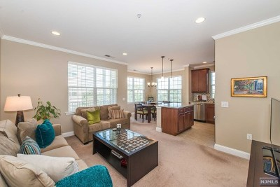 Morris County Condo/Townhouse For Sale: 5314 Sanctuary Boulevard