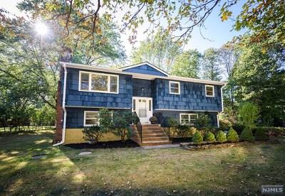 Passaic County Single Family Home For Sale: 339 Otterhole Road