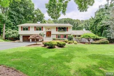 Franklin Lakes NJ Single Family Home For Sale: $729,000