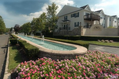 Passaic County Condo/Townhouse For Sale: 78 George Russell Way