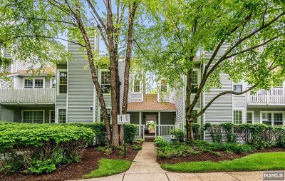 Englewood Condo/Townhouse Under Contract: 40 Mallard Court