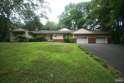 Ringwood Single Family Home Under Contract: 226 Skylands Road