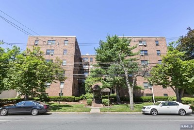 Rutherford Condo/Townhouse Under Contract: 130 Orient Way #4e