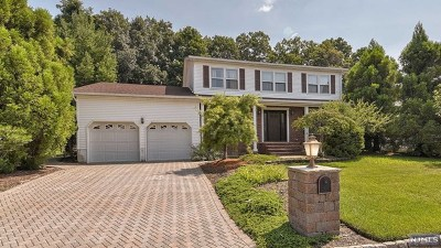 Wayne Single Family Home Under Contract: 93 Point View Parkway
