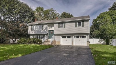 Morris County Single Family Home Under Contract: 18 Franklin Avenue
