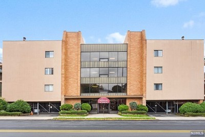 Cliffside Park Condo/Townhouse Under Contract: 390 Gorge Road #301