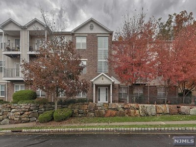 Morris County Condo/Townhouse Under Contract: 13 Mountainview Court