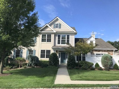 Woodland Park Condo/Townhouse Under Contract: 17 Quarry Drive