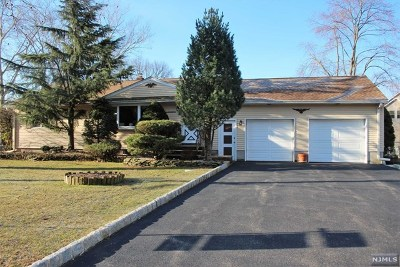 Essex County Single Family Home Under Contract: 17 East Lebeda Drive