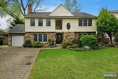 Bergen County Single Family Home Under Contract: 203 Valley Road