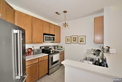 Hudson County Condo/Townhouse Under Contract: 24 Ave At Port Imperial #225