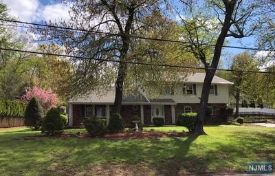 Wayne Single Family Home Under Contract: 31 Toms Lake Road