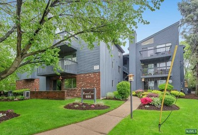 Rutherford Condo/Townhouse Under Contract: 555 Riverside Avenue #5