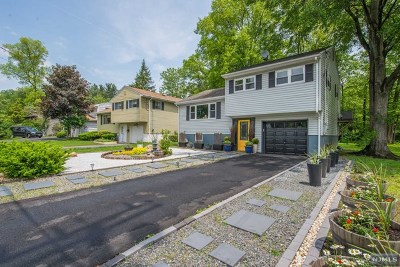 Denville Township Single Family Home Under Contract: 36 Riverside Drive