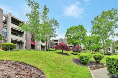 Essex County Condo/Townhouse Under Contract: 1 River Road #8l