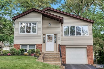 Morris County Single Family Home Under Contract: 584 Dell Road