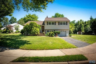 Passaic County Single Family Home Under Contract: 17 Terrace Road