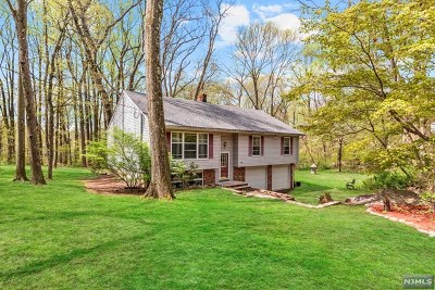 Morris County Single Family Home Under Contract: 17 Shirley Terrace