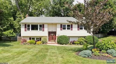 Morris County Single Family Home Under Contract: 23 Roscoe Avenue
