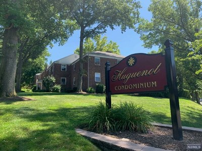 Englewood Condo/Townhouse Under Contract: 80 Huguenot Avenue #12a