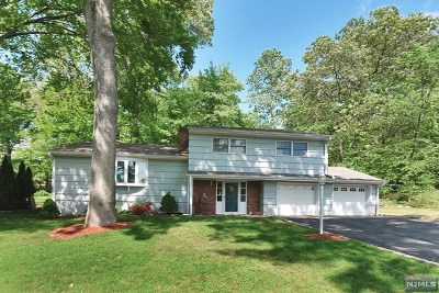 Wayne Single Family Home Under Contract: 300 Indian Road