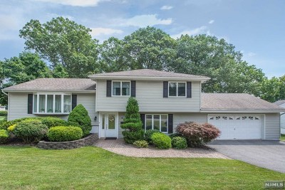 Passaic County Single Family Home Under Contract: 28 Berry Drive