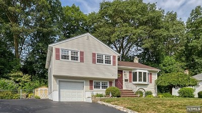 Bloomingdale Single Family Home Under Contract: 113 Knolls Road