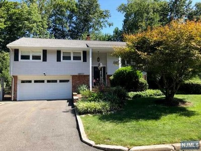 Park Ridge Single Family Home Under Contract: 222 Doxey Drive