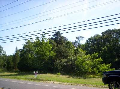 Vineland Residential Lots & Land For Sale: 1811 S Orchard
