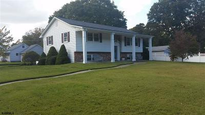 Millville Single Family Home For Sale: 428 Rieck