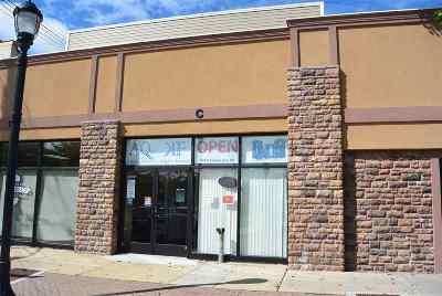 Vineland Commercial For Sale: 547 E Landis Ave