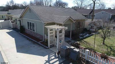 Millville Single Family Home For Sale: 1401 Fairton Road