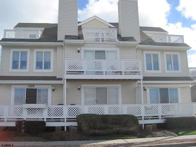 Atlantic City, Longport, Longport Borough, Margate, Ventnor, Ventnor Heights Rental For Rent: 227 N 36th Avenue
