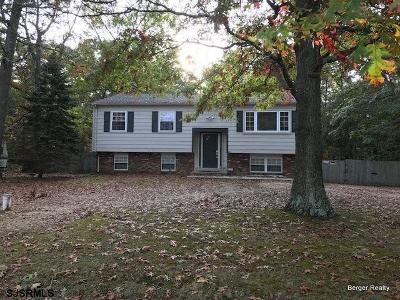 Franklinville Single Family Home For Sale: 591 Township Line Road
