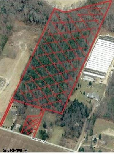 Pittsgrove Township Residential Lots & Land For Sale: 38 Reckondorfer Ave Ave