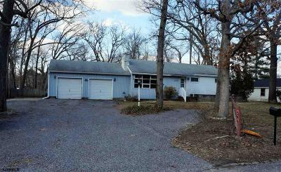 Millville Single Family Home For Sale: 1210 E Broad St